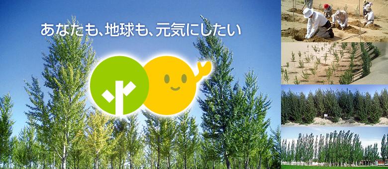 わたまんの植林活動